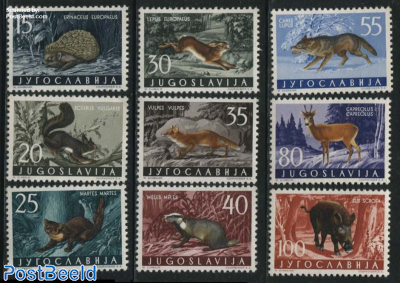 Forest animals 9v